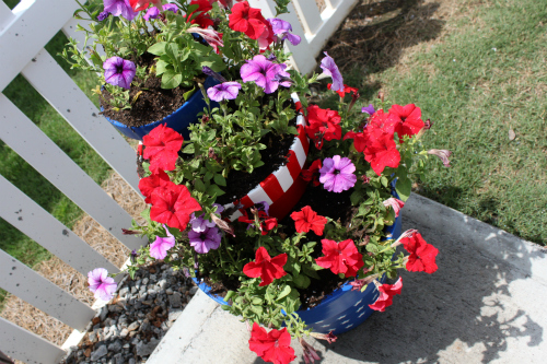 {star spangled planter}