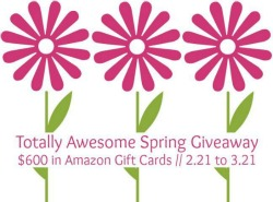 Totally Awesome Spring Giveaway