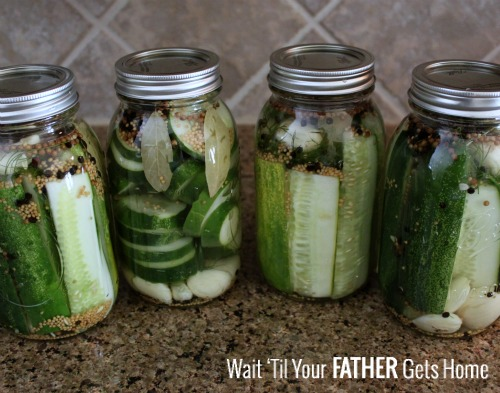 Easy & Delicious Refrigerator Pickles