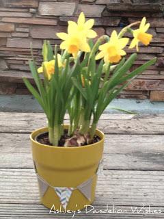 bunting flower pot