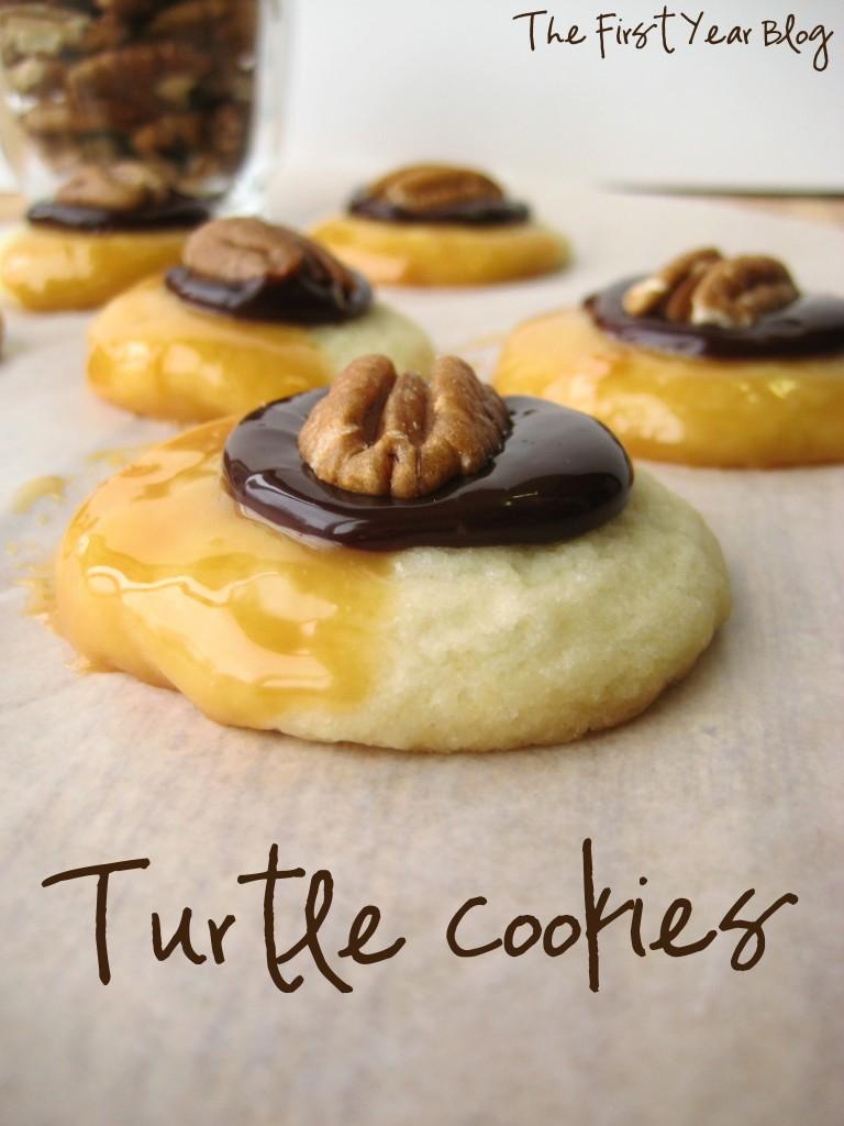 Turtle-Cookies-2-768x1024
